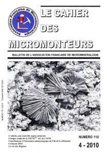cahier des micromonteurs 110