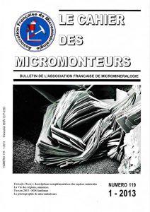 cahier des micromonteurs 119