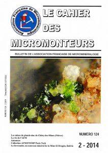 cahier des micromonteurs 124