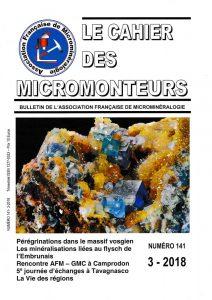 cahier des micromonteurs 141