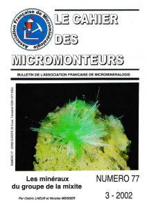 cahier des micromonteurs 77