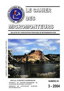 cahier des micromonteurs 85